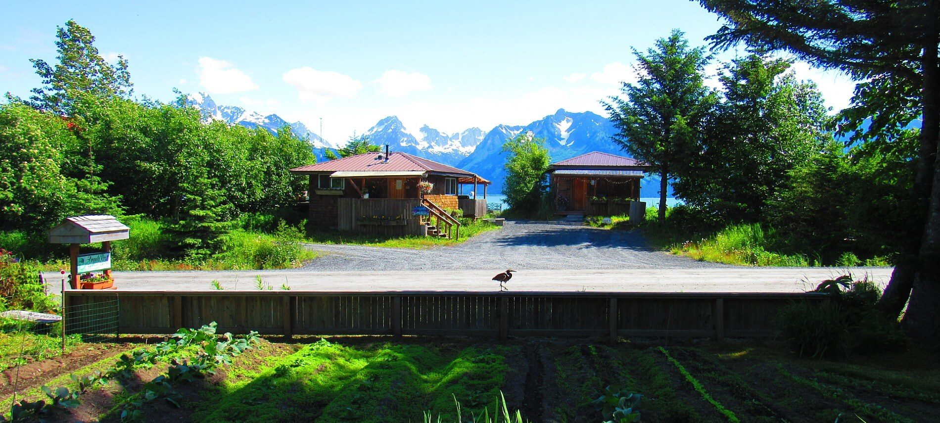 Garden behind long fence with two small brown cabins across the road and mountain range in the distance
